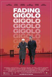 Fading Gigolo ยอดชาย…นายดอก(ไม้) 2013
